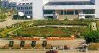 青岛大学关于开展2018届本科毕业论文(设计)文字复制比检测通知